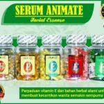 Jual Serum Animate Untuk Perawatan Wajah di Paringin