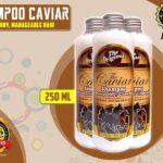 Review Lengkap Caviar Shampoo Harganya Murah
