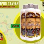 Jual Caviar Shampo Untuk Rambut Rontok di Padang Pariaman