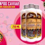 Jual Caviar Shampo Penumbuh Rambut Botak di Barito Utara