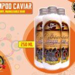Jual Caviar Shampo Untuk Melebatkan Rambut di Barito Selatan